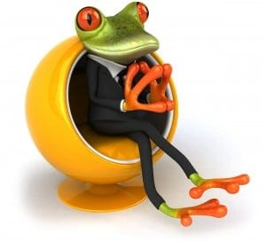 frog on a conference call