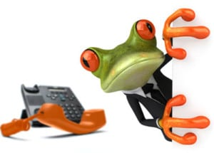 Frog with a phone on a conference call with people in Australia