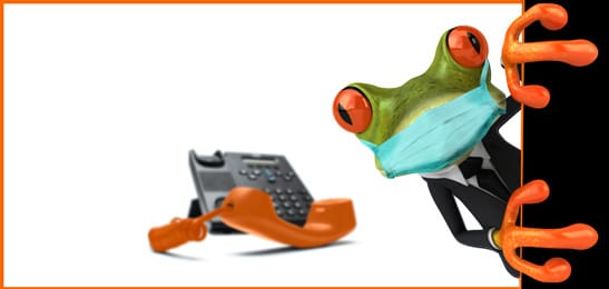 teleconferencing service using a telephone in Australia HOtAir Frog